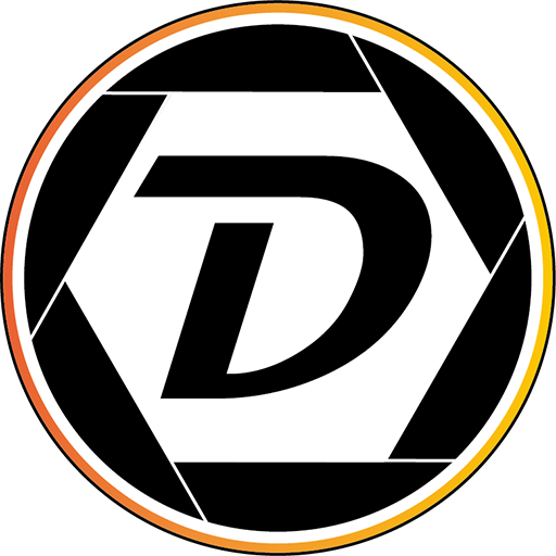 Dansicht Media Logo